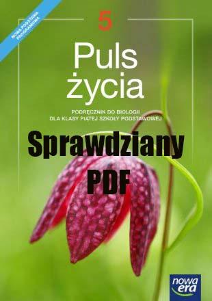 Puls Życia Klasa 5 Sprawdziany PDF