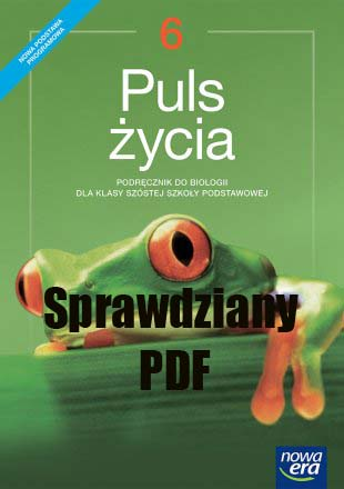 Puls Życia Klasa 6 Sprawdziany PDF
